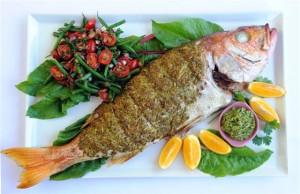 fish-image